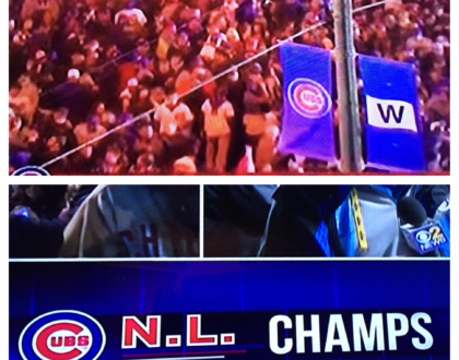 Yes the Cubs Won!